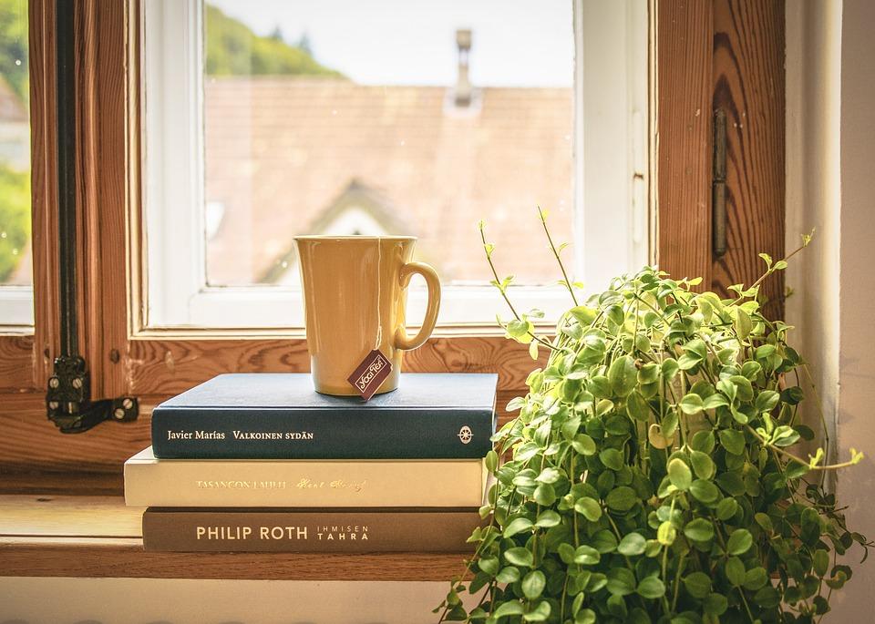 okno, knihy
